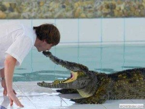 Crocodile Kiss