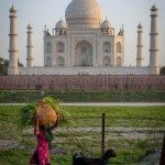 Taj mahal with goat herder