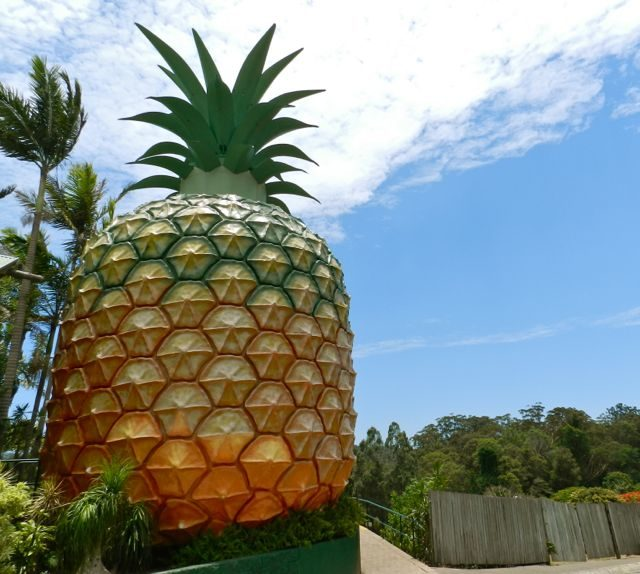 Romantic getaways sunshine coast hinterland - Big Pineapple