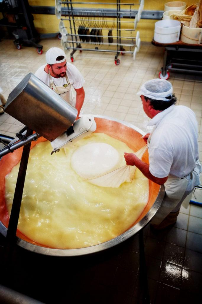 Day Trips From Bologna - Parmesan Cheese Factory Tour